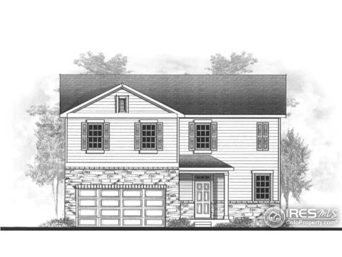 3611 Day Lily St, Wellington CO 80549