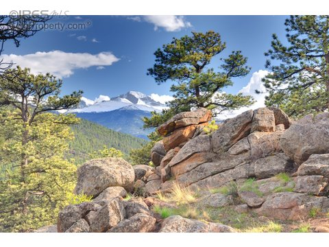 1441 Bluebell Dr, Estes Park CO 80517