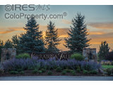 1115 WATERFALL ST, TIMNATH, CO 80547  Photo 19