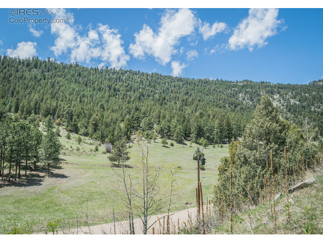 Dunraven Glade Rd Glen Haven, CO 80532 - MLS #: 806423