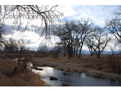 , Acreage Portion 21-5-68, Loveland