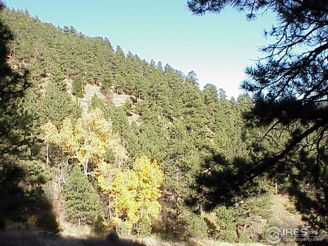 0%20Lefthand Canyon%20Dr%20