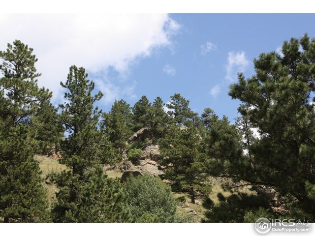 0 Dunraven Glade Rd Glen Haven, CO 80532 - MLS #: 814930