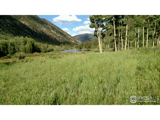 2182 Silver Valley Rd Silver Plume, CO 80476 - MLS #: 820208