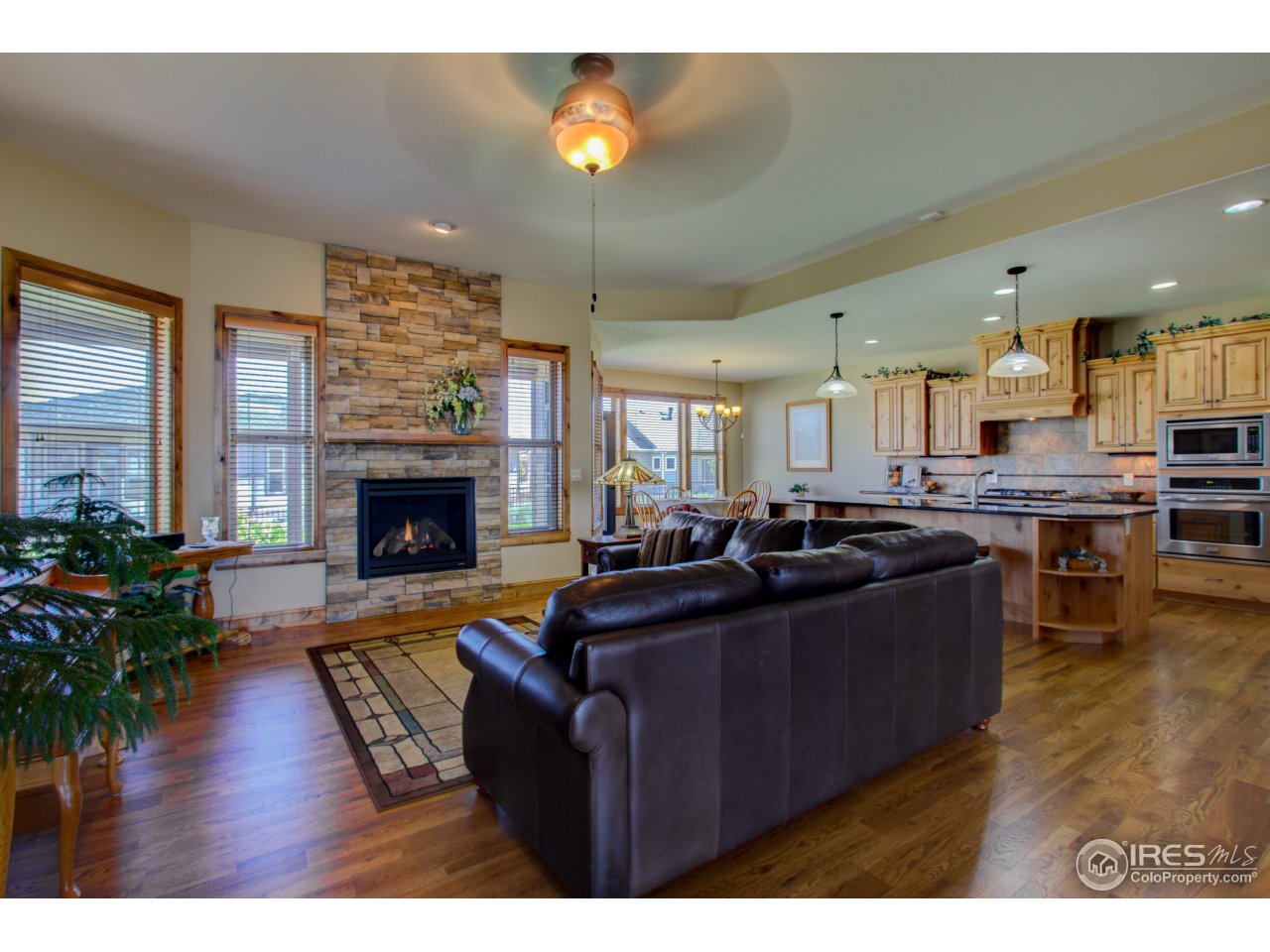 3541 Red Orchid Ct, Loveland CO 80537