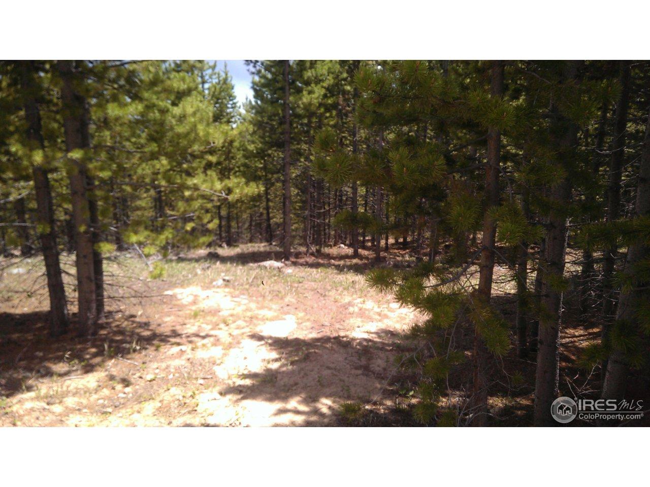 Rv Types Camp Land.html
