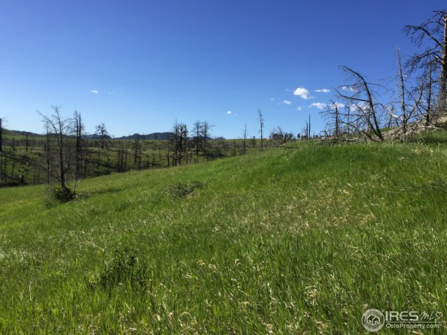 1820 Eiger Rd Livermore, CO 80536 - MLS #: 809958