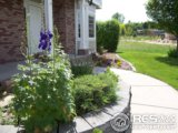 1233 BELLEVIEW DR, FORT COLLINS, CO 80526  Photo 10