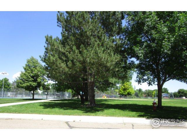 116 Baylor Dr Longmont, CO 80503 - MLS #: 823251