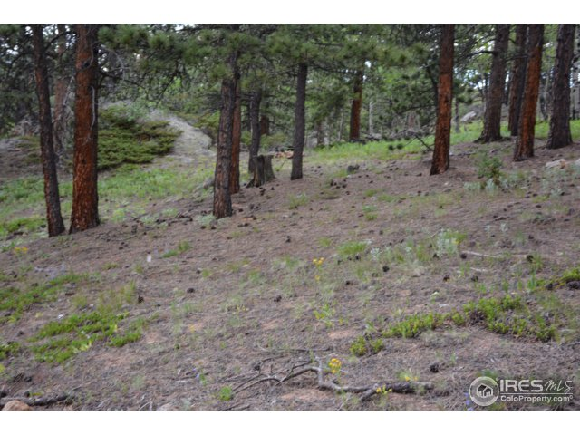 50 Bigbee Rd Ward, CO 80481 - MLS #: 824939