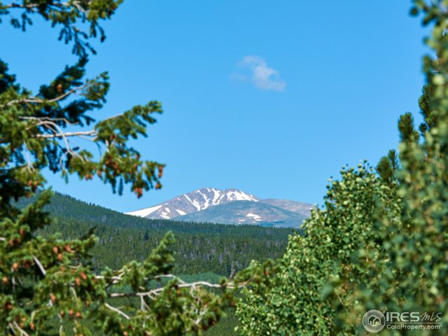 281 Patricia Rd Rollinsville, CO 80474 - MLS #: 826834