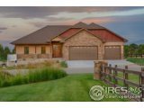1115 WATERFALL ST, TIMNATH, CO 80547  Photo 2