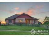 1115 WATERFALL ST, TIMNATH, CO 80547  Photo 8
