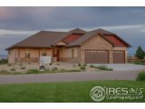 1115 WATERFALL ST, TIMNATH, CO 80547  Photo 5