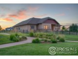 1115 WATERFALL ST, TIMNATH, CO 80547  Photo 4