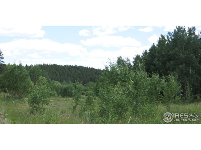2804 Upper Apex Rd Black Hawk, CO 80422 - MLS #: 829388