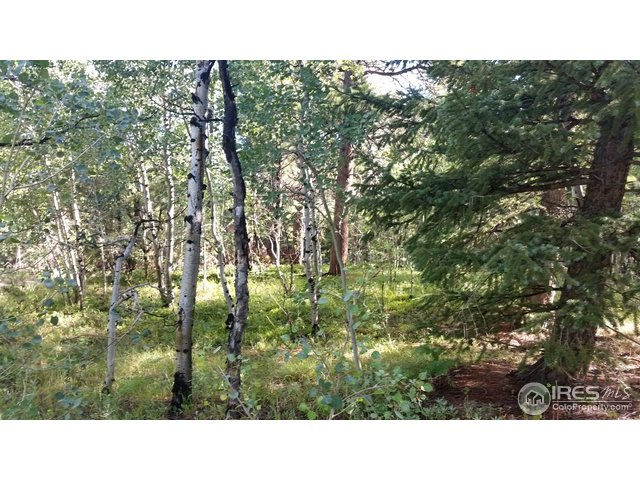 0 Ridge Rd Nederland, CO 80466 - MLS #: 827837