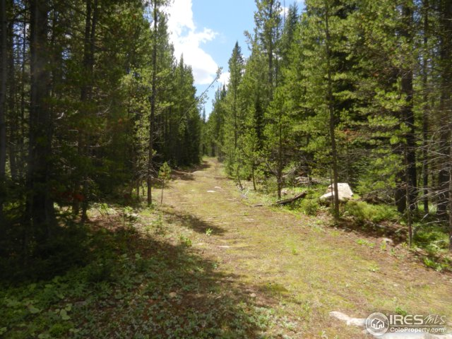 0 Forest Service Road 169 Red Feather Lakes, CO 80545 - MLS #: 828421