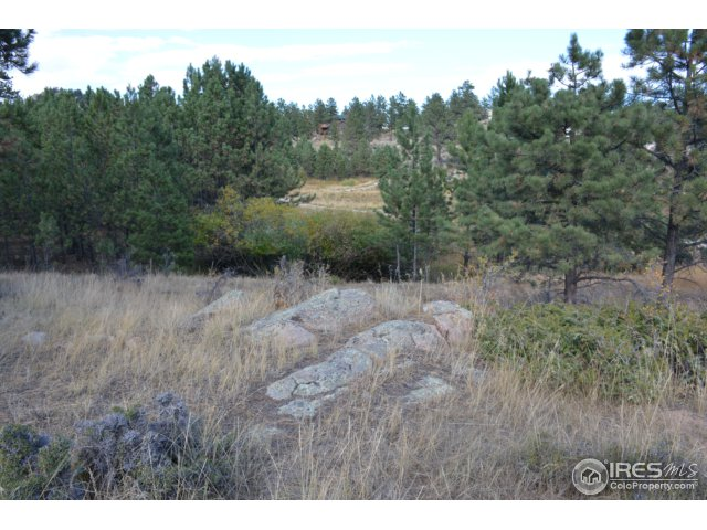 48 Humboldt Dr Livermore, CO 80536 - MLS #: 827535