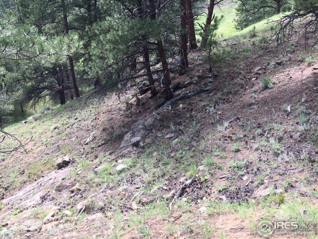 Wagonwheel Gap Rd Boulder, CO 80302 - MLS #: 828655