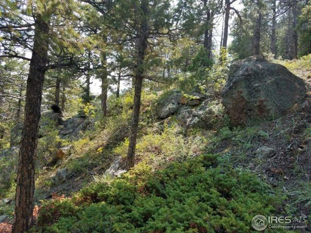 0 Sleepy Hollow Ct Estes Park, CO 80517 - MLS #: 828505