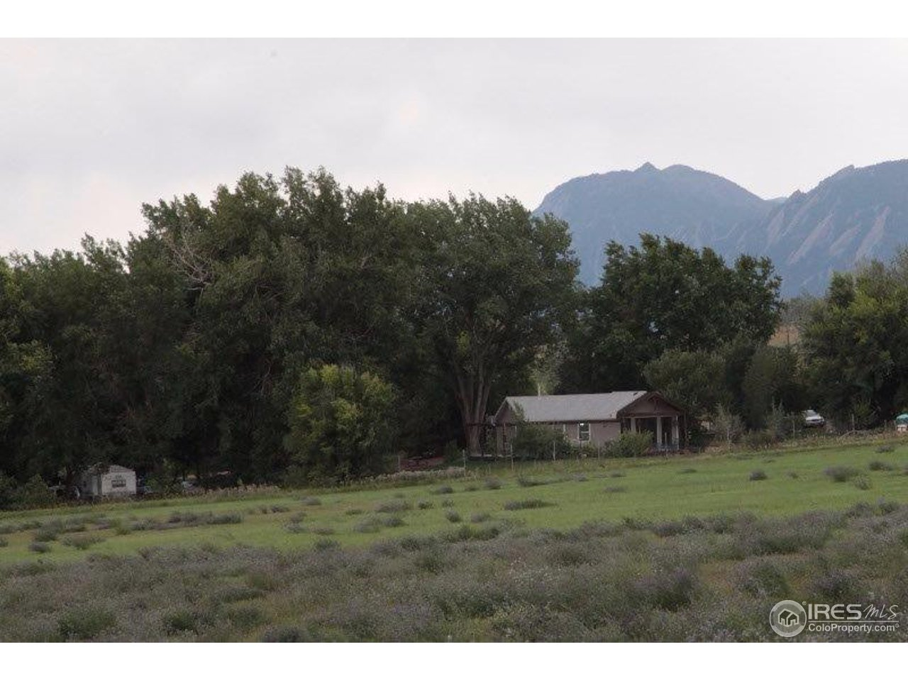 5053 Oxford Rd, Longmont CO 80503