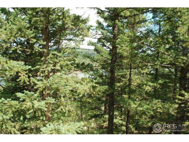 66 Blue Spruce Dr Nederland, CO 80466 - MLS #: 832893