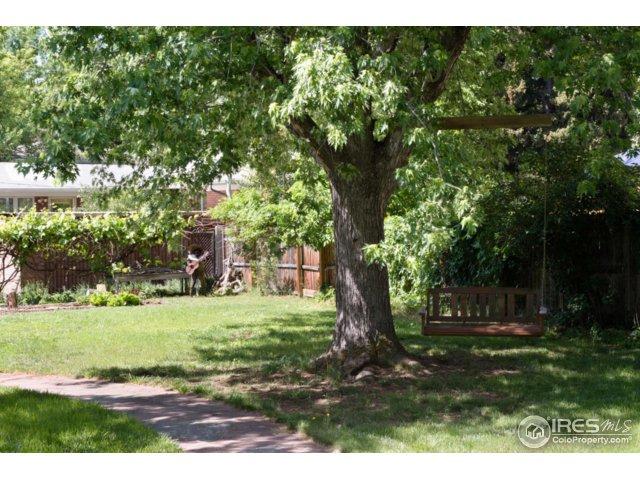 Backyard swing and garden