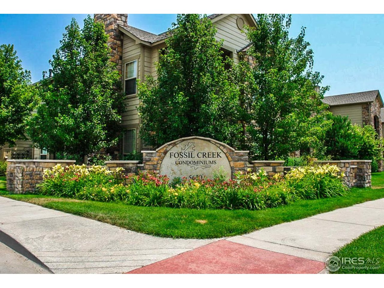 5620 Fossil Creek Pkwy 6302, Fort Collins CO 80525