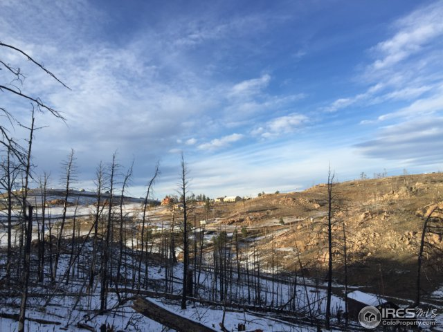 156 Mount Mcconnell Dr Livermore, CO 80536 - MLS #: 836975