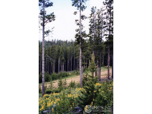 321 Arapahoe Way Red Feather Lakes, CO 80545 - MLS #: 838799