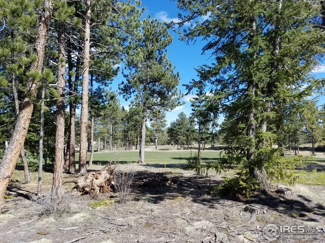 2433 E Fox Acres Dr Red Feather Lakes, CO 80545 - MLS #: 839582