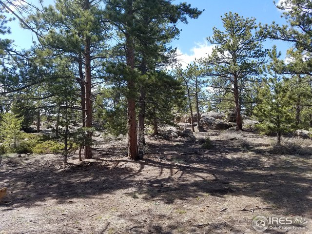 3080 E Fox Acres Dr Red Feather Lakes, CO 80545 - MLS #: 839583