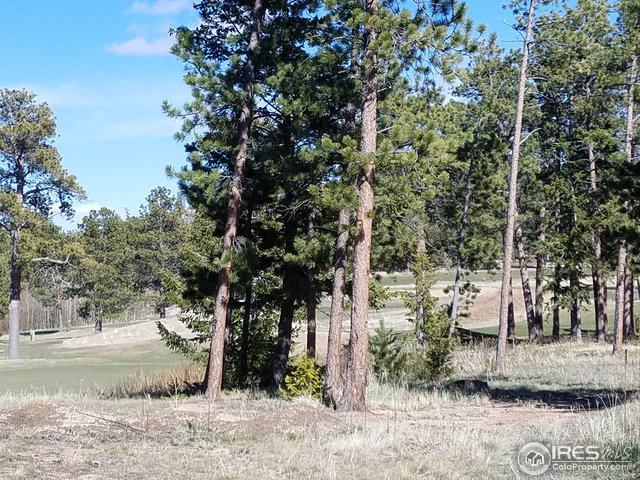 40 Arapahoe Ct Red Feather Lakes, CO 80545 - MLS #: 839584