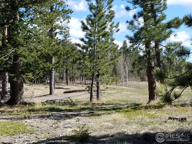 30 Arapahoe Ct Red Feather Lakes, CO 80545 - MLS #: 839585