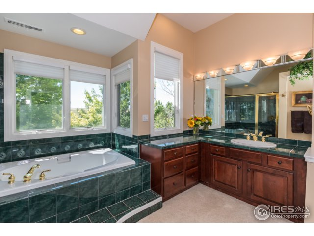 Master bathroom and large walk in closet