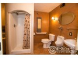 46355 COUNTY ROAD 95, BRIGGSDALE, CO 80611  Photo 9