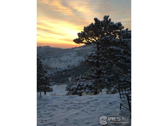 Winter Scene from Back