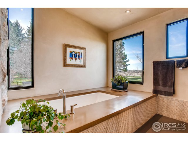 Master Soaking Tub with View