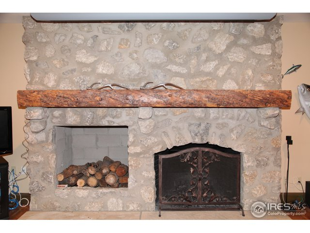 Lower Level Wood Fireplace