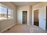 4129 CARRARA ST, EVANS, CO 80620  Photo 21