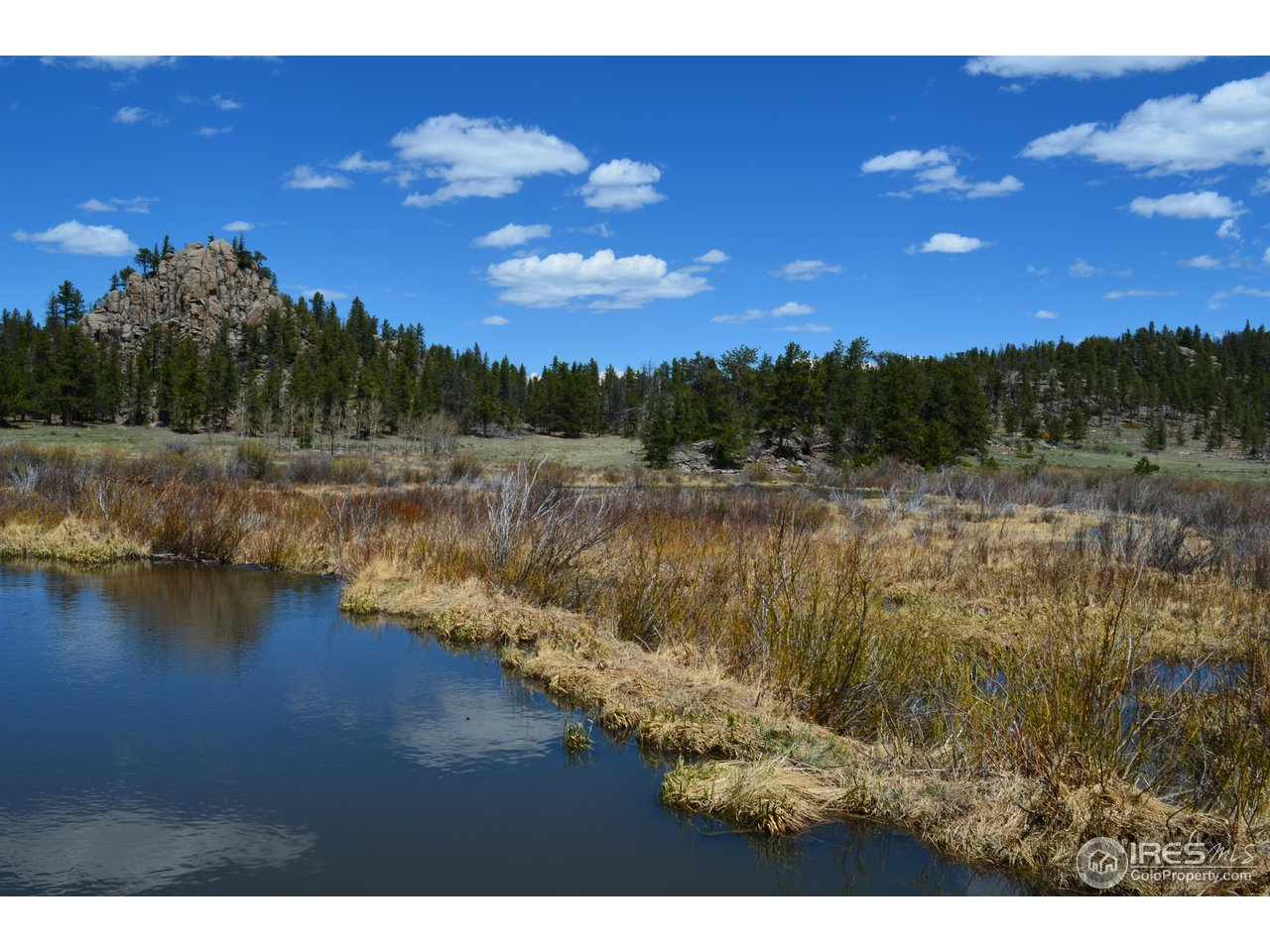 6730 CR 69, Red Feather Lakes CO 80545