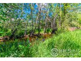 1015 ARANCIA DR, FORT COLLINS, CO 80521  Photo 15