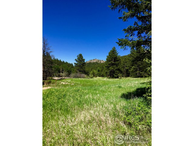 575 Spruce Dr Lyons, CO 80540 - MLS #: 848568