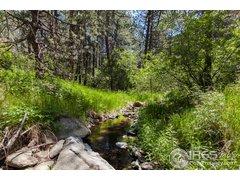 1157, Spruce Mountain, Drake