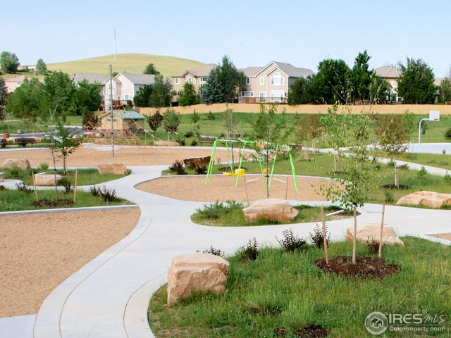 Brand new Wildflower park just steps from the hous