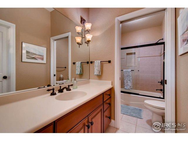 Lower Level Bathroom