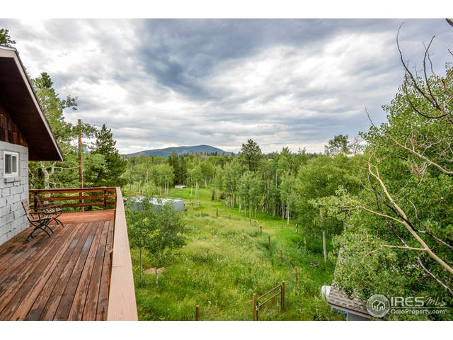 193 Tiny Bob Rd Red Feather Lakes, CO 80545 - MLS #: 856529