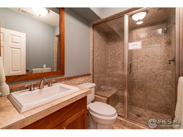 Lower Level bathroom with steam shower