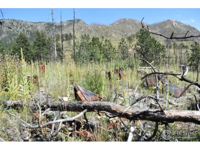 0 Paradise Park Rd Bellvue, CO 80512 - MLS #: 858995
